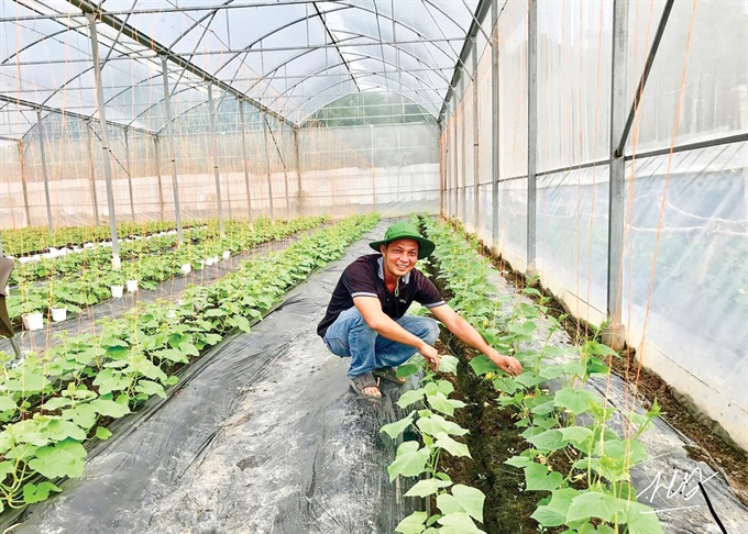 Cần Thơ to provide agricultural training to 1400 rural people