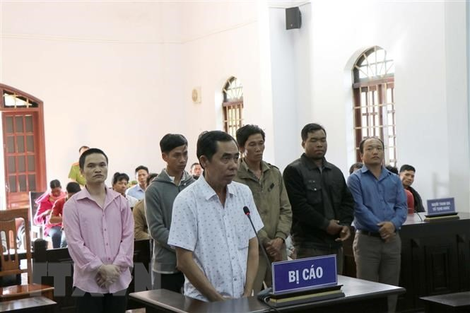 Đắk Nông Peoples Court opens trial on deforestation and bribery