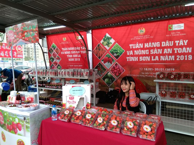 Sơn La strawberry and farm produce 2019 launched in Big C Hà Nội