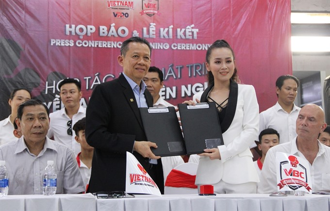 Boxing groups to professionalise sport in VN