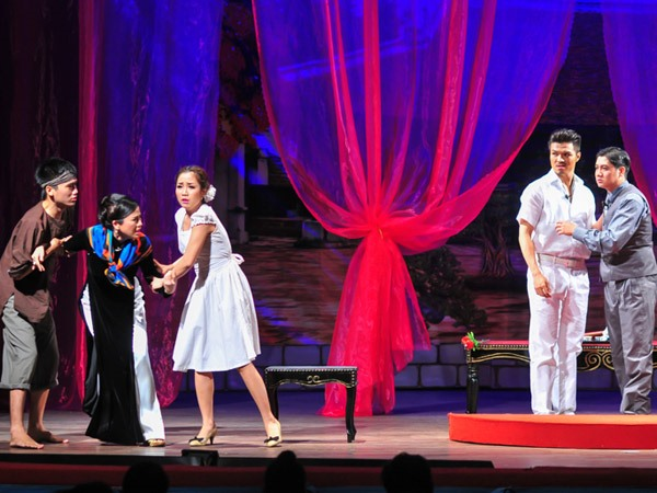 HCM City theatres stage new shows for Tết