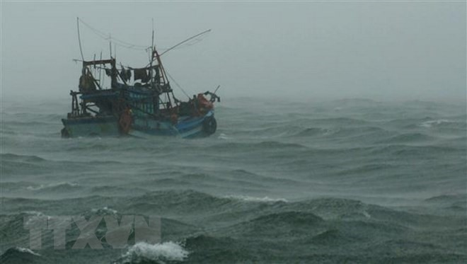 Fishermen rescued at sea