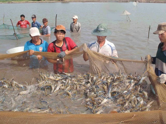Mekong Delta aims for high-quality agriculture in 2019
