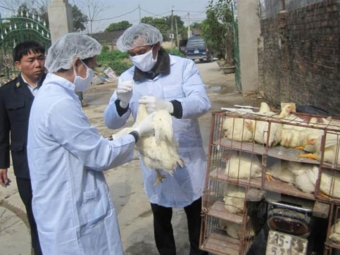 Provinces take action against disease outbreaks among cattle poultry