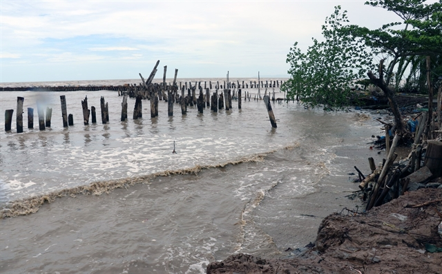 Kiên Giang coastal erosion requires 69 million solution