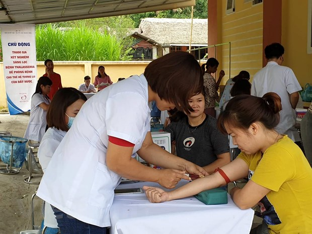 Alarming percentage of thalassemia patients in Tuyên Quang Province