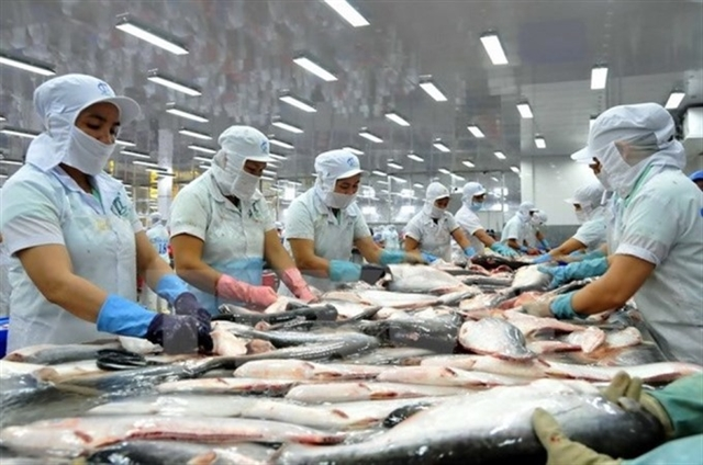 DOC announces review on anti-dumping duties on frozen tra fish fillets from Việt Nam
