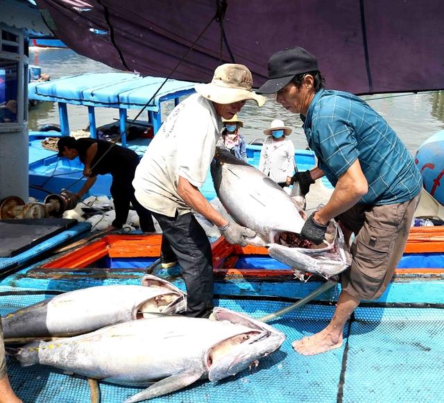 Việt Nam works hard to combat illegal fishing