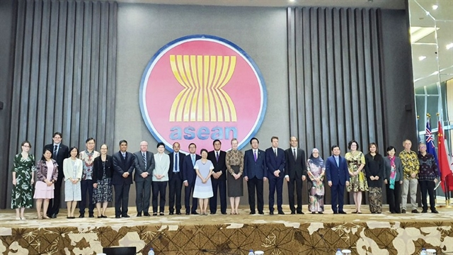 ASEAN members review IAI projects