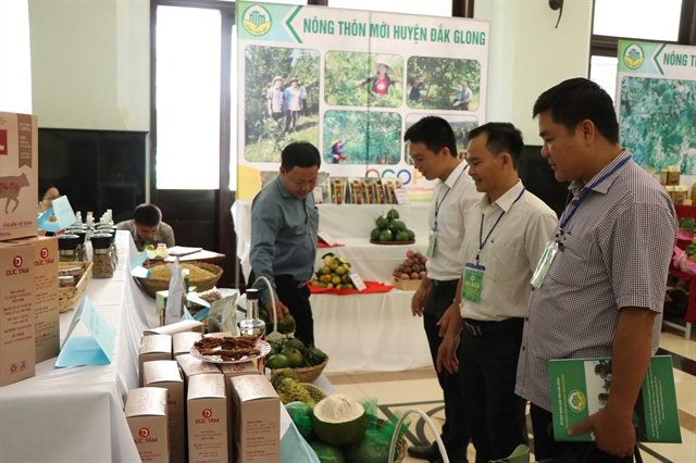 Đắk Nông sets targets for new-style rural areas