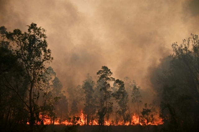 Greater Sydney faces catastrophic bushfire threat