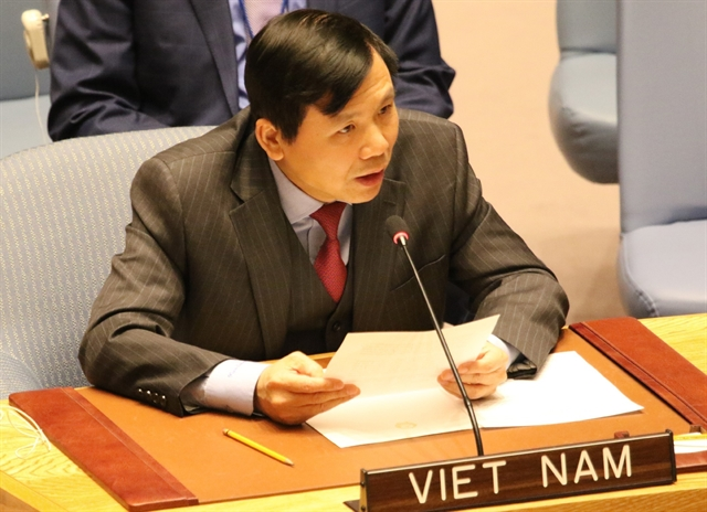 Việt Nam highlights ASEANs efforts to observe child rights