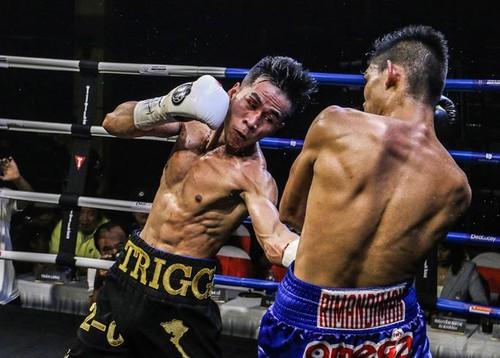Thảo wins WBO youth title