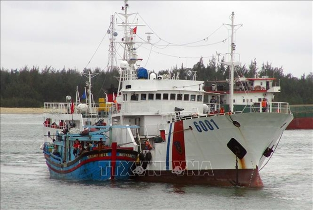 VN adopts EU recommendations to combat IUU fishing