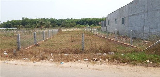 Hải Phòng to review land violations