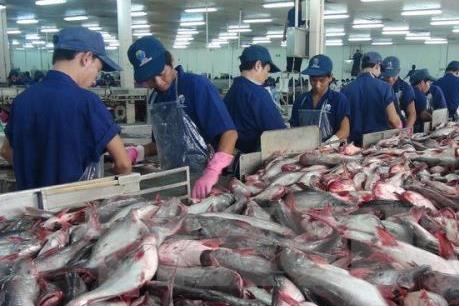 Export of tra fish expected to reach 2.06 billion this year