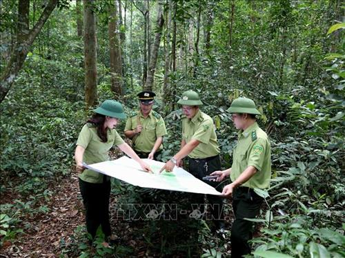 VN to boost tourism development in protective special-use forests