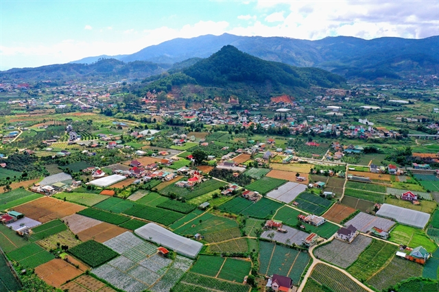 Việt Nams agriculture sector sets goals for 2020