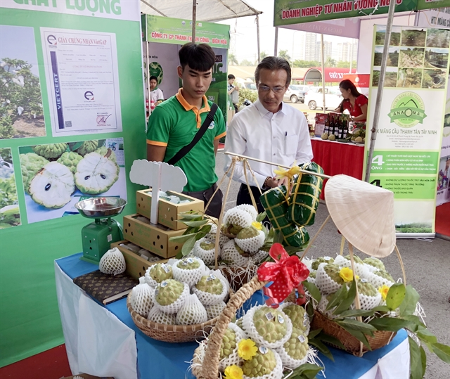 Tây Ninh promotes safe agricultural products foodstuff in HCM City