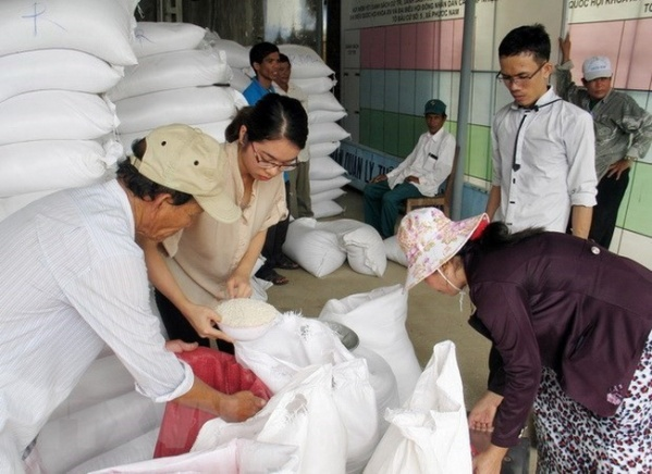 Over 110700 tonnes of rice from reserve allocated to localities