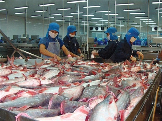 Seafood firm Vĩnh Hoàn to pay dividend in shares
