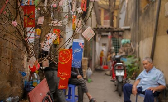 Dialysis hamlet patients celebrate a lonely Tết
