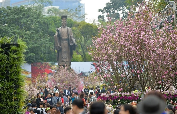 Japanese cherry blossom festival coming to Hà Nội