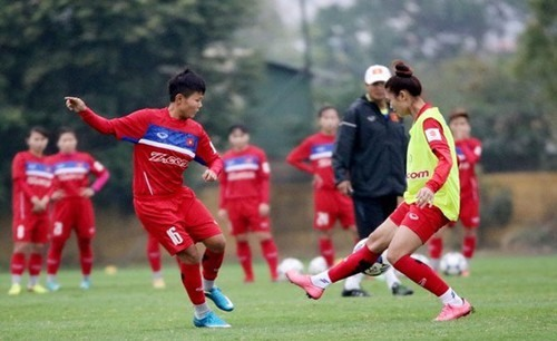 Việt Nam teams learn opponents for Olympics AFC qualifiers