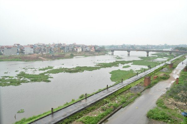 Nhuệ Đáy rivers seriously polluted