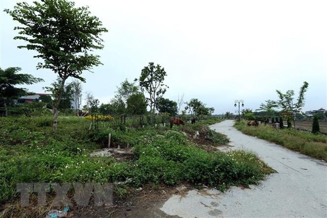 Cần Thơ plans first green infrastructure project