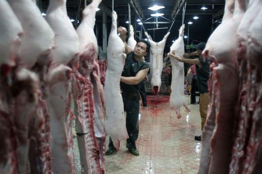 HCM City to mechanise slaughterhouse activities open six new facilities