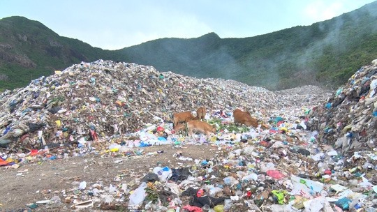 Côn Đảo Island runs out of landfill ships trash to mainland