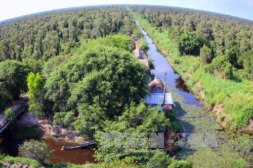Cà Mau to build eco-tourism zone in U Minh Hạ National Park