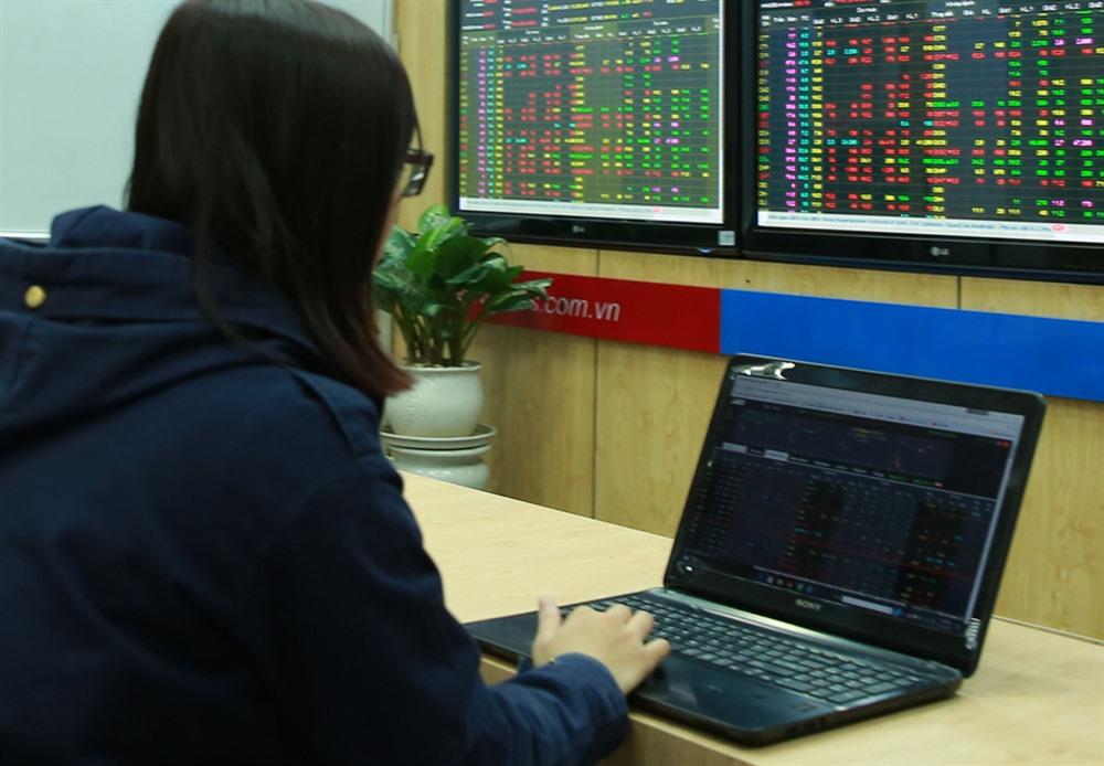 VN stocks rebound on purchasing
