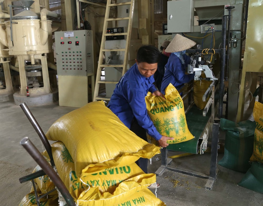 Rice firms face bankruptcy as trade face difficulties