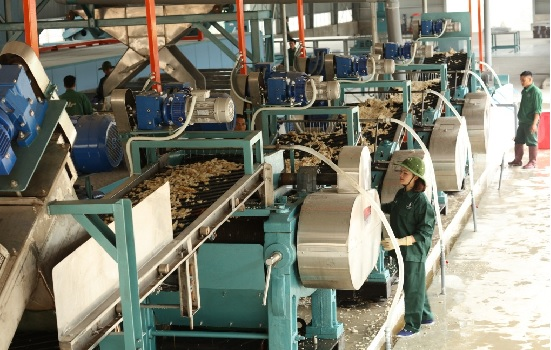 Rubber group urged to boost revenue from wood processing