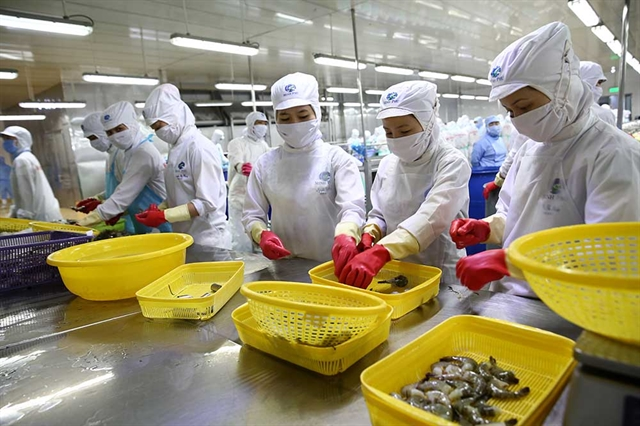Mitsui & Co to invest in Vietnamese shrimp producer Minh Phú