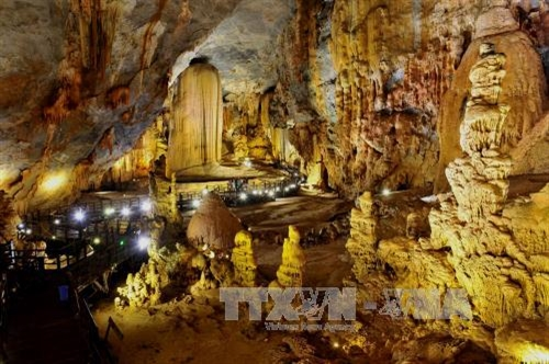 Phong Nha-Kẻ Bàng National Park: one of top 10 wild places in SE Asia