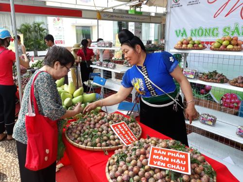 Sơn La Plum promotion week launched in Hà Nội