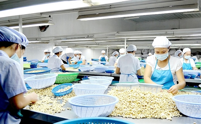 Việt Nam Ivory Coast eye co-operation in agriculture