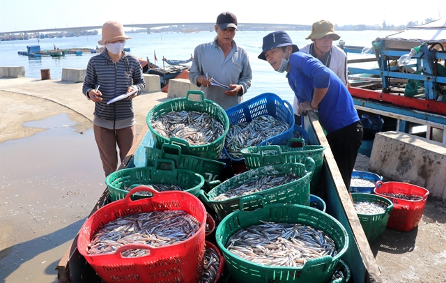 Formosa compensation to be spent on fishing logistics and aquatic ecosystem regeneration