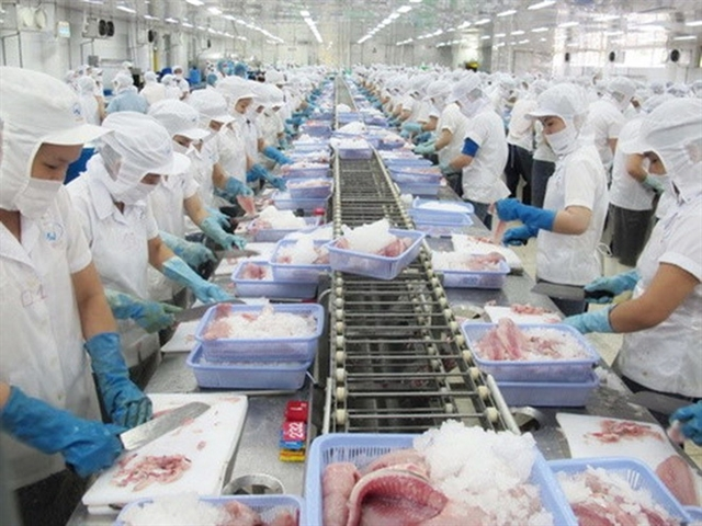 Tra fish exports to China on the rise