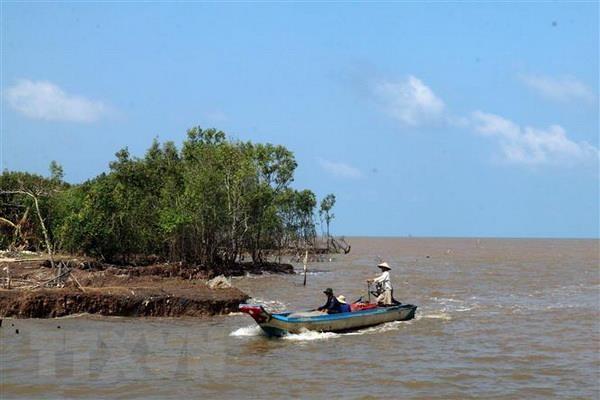 Sea dike erosion worsens in Kiên Giang