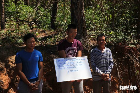 Pine tree poisoning mastermind arrested