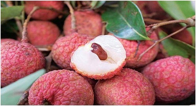 Thiều lychee week to take place in Hà Nội
