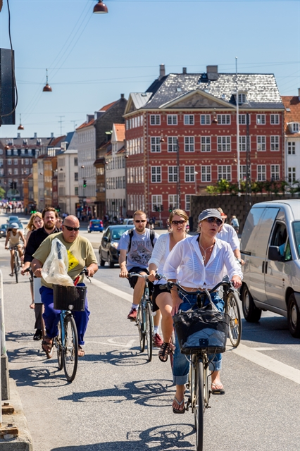 Denmark and Việt Nam: building a green future