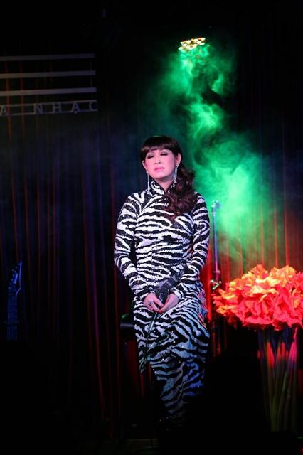 Vietnamese-American pop star Ý Lan performs in HCM City