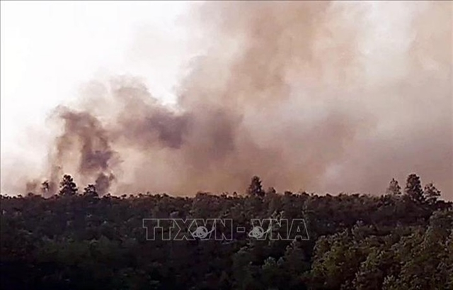 Quảng Nam extinguishes three forest fires