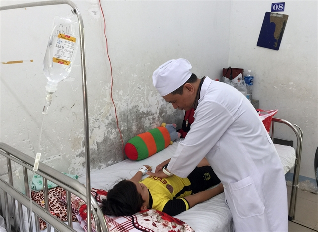 Hà Nội health sector prepares to tackle dengue fever