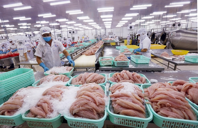 Tra fish prices hit10-year low